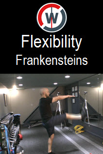 Dynamic Flexibility – Frankensteins