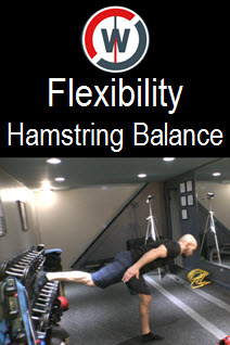 Dynamic Flexibility – Inverted Hamstring Balance