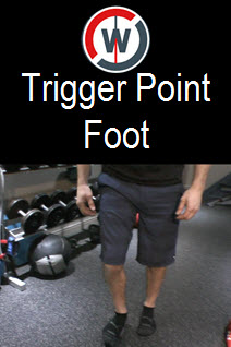Trigger Point Flexibility - The Foot
