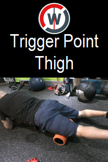 Trigger Point Flexibility - Thigh
